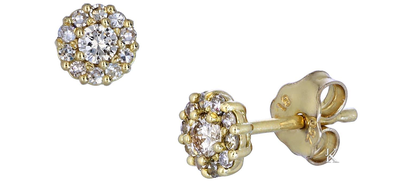 Σκουλαρίκια Καρφωτά από Χρυσό Κ18 με Διαμάντια (19816)