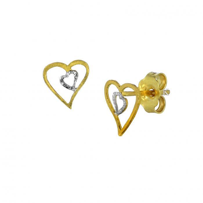 SKU-33141 / Σκουλαρίκια Χρυσός & Λευκόχρυσος Κ14