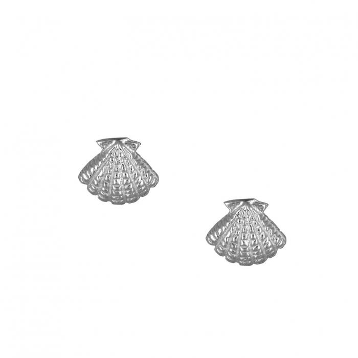 SKU-39566 / Σκουλαρίκια Ασήμι 925°