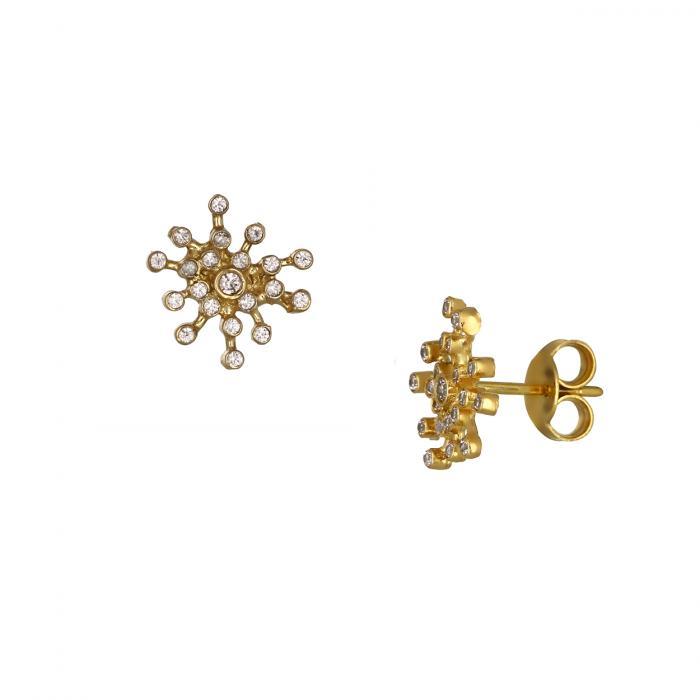 SKU-48846 / Σκουλαρίκια Καρφωτά Χρυσός Κ14 με Ζιργκόν
