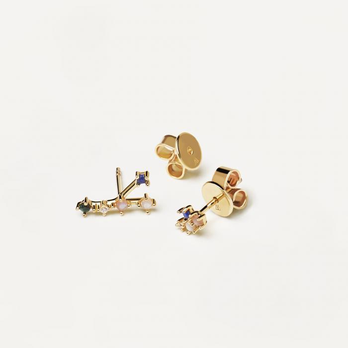 SKU-51316 / Σκουλαρίκια Καρφωτά PDPAOLA Cancer Ασήμι 925°