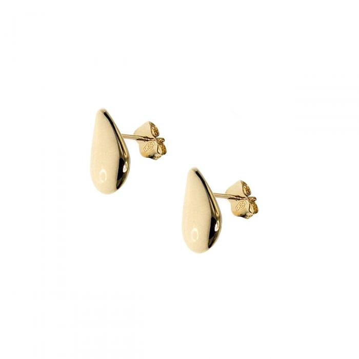 SKU-51669 / Σκουλαρίκια Καρφωτά Χρυσός Κ14